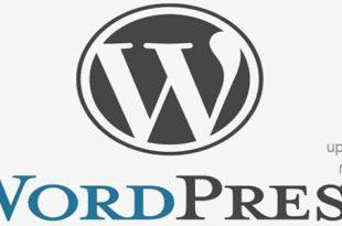 تصویر چگونه با نرم افزار WordPress سایت وردپرسی را مدیریت کنیم؟