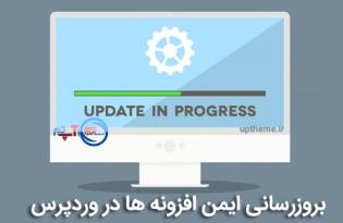 WordPress Plugins Safe Update